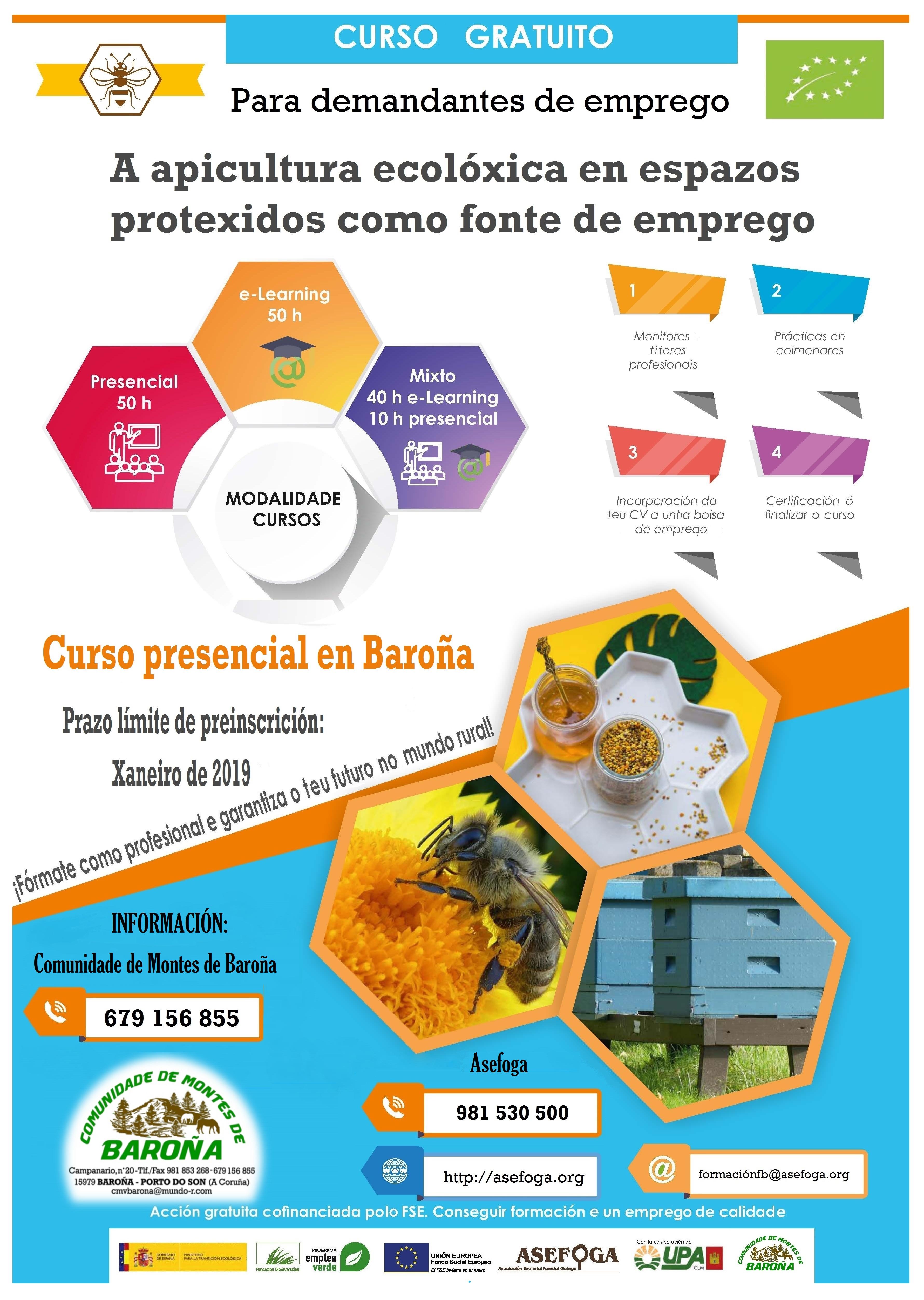 cartel curso apicultura ecolóxica en baroña