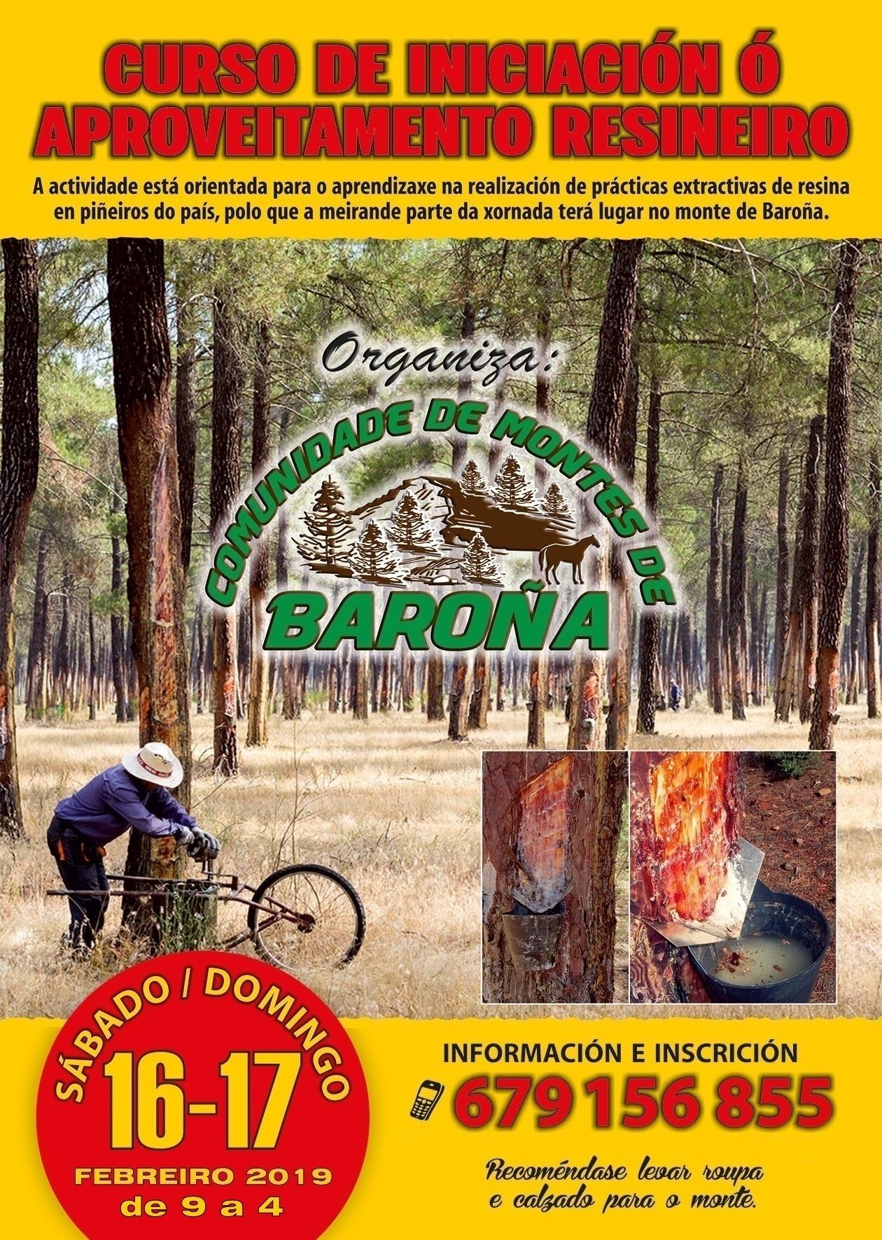 Cartel-Curso-de-Resina-Baroña-2019